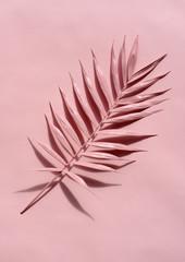 pink palm twig