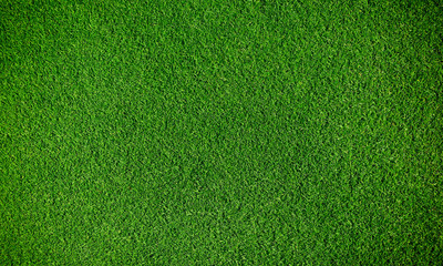 Photo sur Aluminium Herbe Artificial grass background