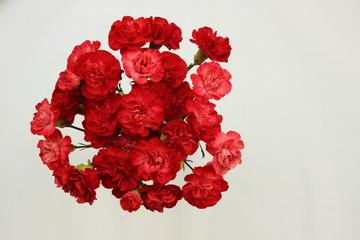 Rote Bouquet Nelken