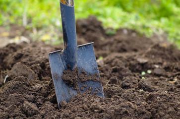 preparazione del giardino per primavera
