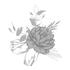 Black and white vector line sketch illustration, bouquet of tulip and peony.