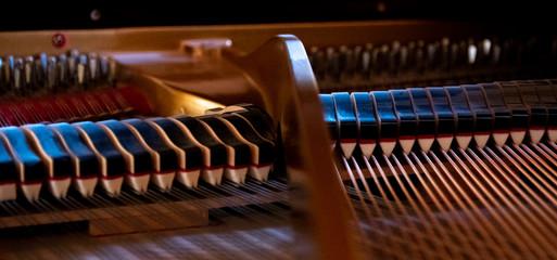 interior of a grand piano, harp,