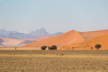 African landscape, beautiful red sand dunes and nature of Namib desert, Sossusvlei, Namibia, South Africa