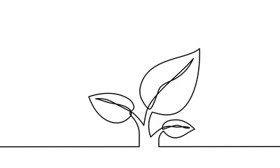 continuous one line art. can be for plants, agriculture, seeds. Black and white vector illustration. Vector