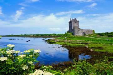 View of the medieval Dunguaire Castle along the shore of Galway Bay with reflections and flowers, Ireland