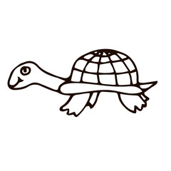 Cartoon doodle linear turtle isolated on white background. Vector illustration.