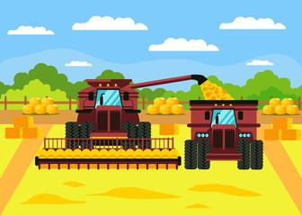 Grain Crop Harvest Flat Vector Illustration