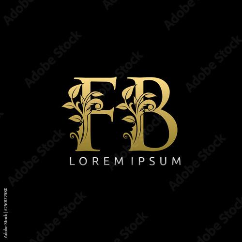 Luxury Gold FB Letter Logo