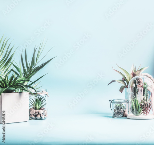 Trending Home Plant Decor Green House Plants In Pots Glass