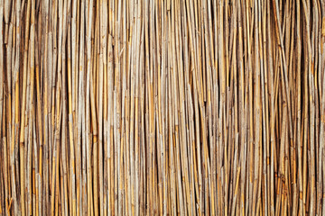 Bamboo mat background. Texture of old reed mat.