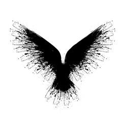 Black blots raven