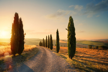 Foto auf AluDibond Toskana italy tuscany countryside rolling hills; summer farmland and country road;