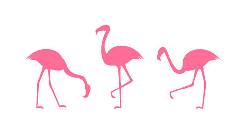 Set of Pink Flamingo Silhouettes