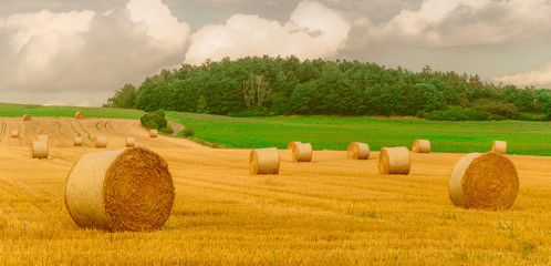 Fotoväggar - Landschaft im Sommer, abgeerntetes Getreidefeld