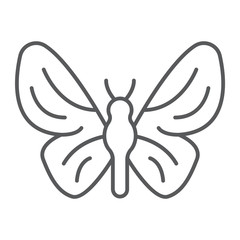 Butterfly thin line icon, nature and fly, insect sign, vector graphics, a linear pattern on a white background.
