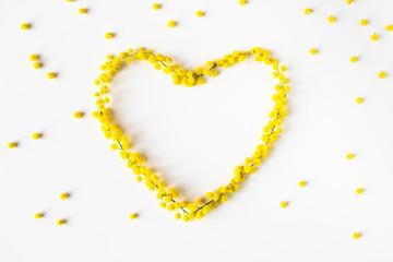 Obraz Festa della Donna 8 Marzo, simbolo del cuore fatto con fiori Mimosa giallo su uno sfondo bianco. - fototapety do salonu