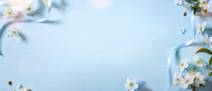 Spring floral background with spring white flower; bright Easter background