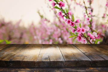 wooden table in front of spring blossom tree landscape