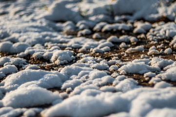 the snow melts in the sun