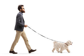 Bearded man walking a maltese poodle dog