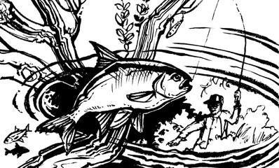 underwater big fish (fish grab a fly)