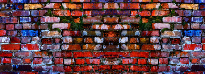 Old Textured Wall with Colorful Bricks and Green Moss Growing