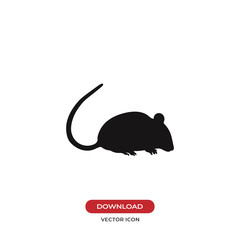 Rat vector icon