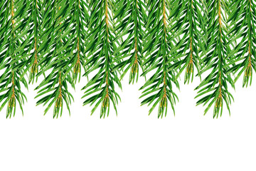 Background of green branches