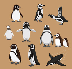 Cute Banded African Penguin Family Cartoon Vector Illustration