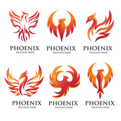 luxury and creative phoenix logo set vector concept