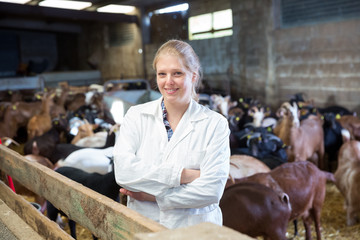 Female veterinarian on goat farm