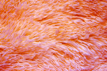 Coral colored fluffy fake fur texture
