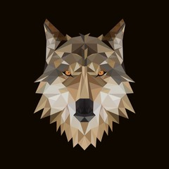 polygonal wolf head vector illustration