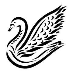 Beautiful swan with raised wing, black pattern