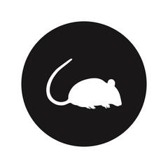 Rat vector icon