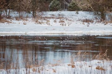 Keuken foto achterwand Chocoladebruin Winter landscape on the river