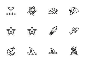 Sea life line icon set. Turtle, shark, squid