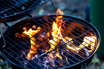 Barbecue fire with round grill. Food preparing concept with bbq fire on grill