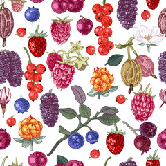 Seamless pattern with hand drawn berries