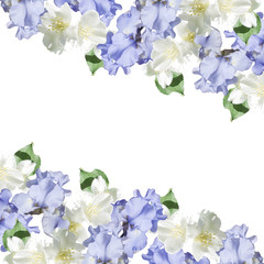 Fototapete - Beautiful floral background of irises and Jasmine