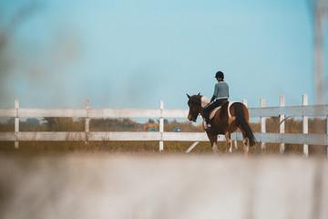 horse riding outdoor