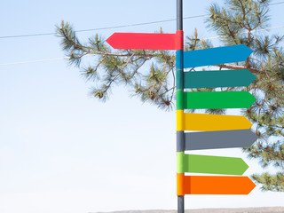 Colorful variety of direction signs on a metallic pole, blue sky and tree branch background