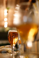 golden isolated beer at night in pub. Bokeh beer glass