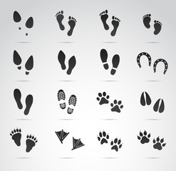 Footprint collection (human and animal). Vector art.