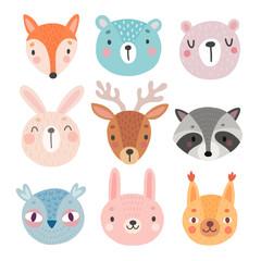 Wall Mural - Cute Woodland characters, bear, fox, raccoon, rabbit, squirrel, deer, owl.