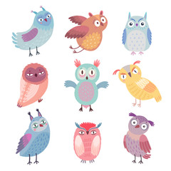 Wall Mural - Cute Woodland owls. Funny characters with different mood.