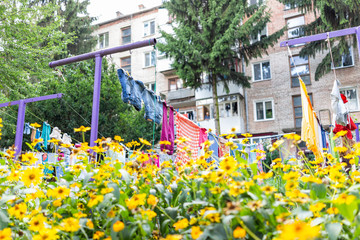 Many yellow flowers in summer garden with colorful clothes hanging drying on rack in Ukraine or Russia, balcony window Soviet typical apartment buildings