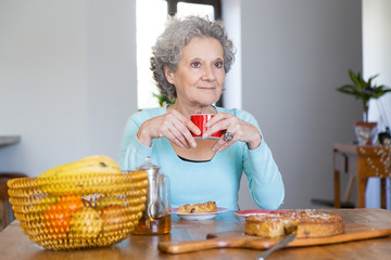 Excited grey haired lady enjoying party for seniors