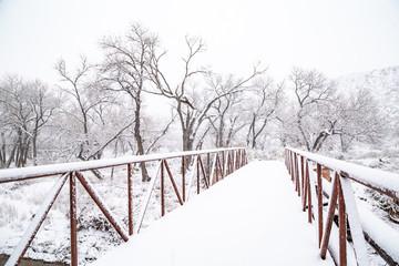Foot bridge with fresh snowfall