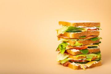 Keuken foto achterwand Snack Whole tasty sandwich concept